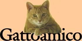 il sito amico del gatto